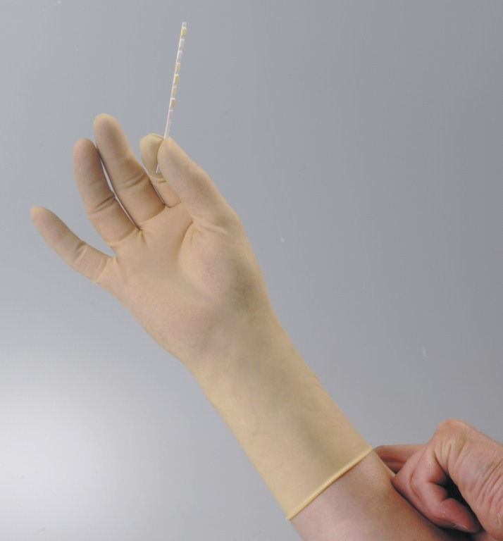 latex glove Surgical